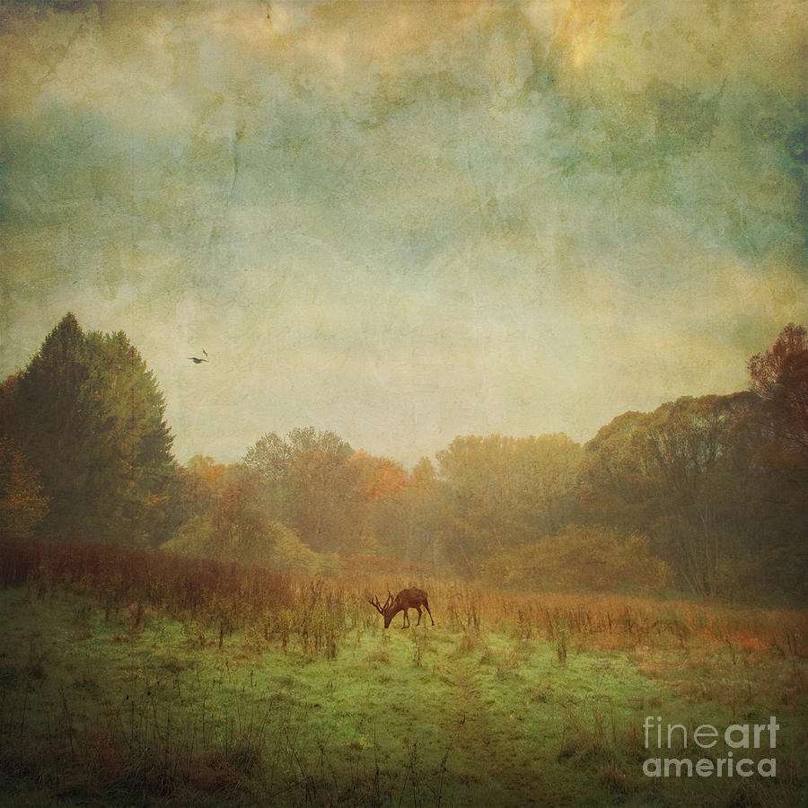Idyllic Painterly Fall Morning Photograph  - Idyllic Painterly Fall Morning Fine Art Print