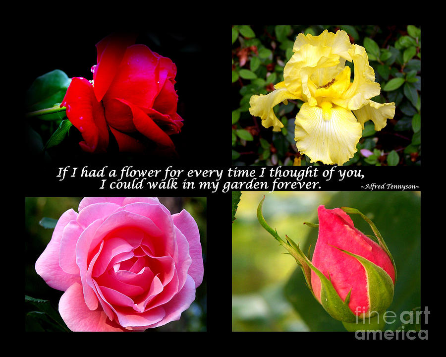 If I Had A Flower Collage Photograph  - If I Had A Flower Collage Fine Art Print