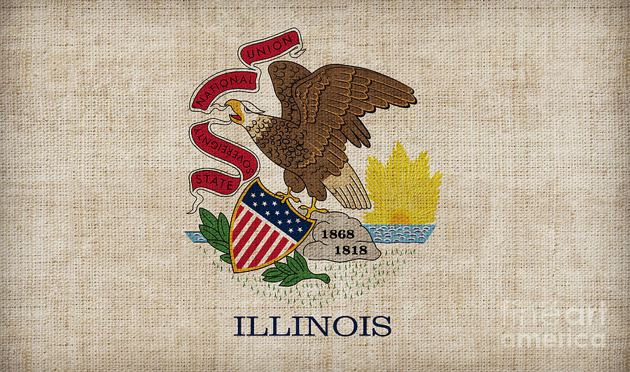 Illinois State Flag Painting