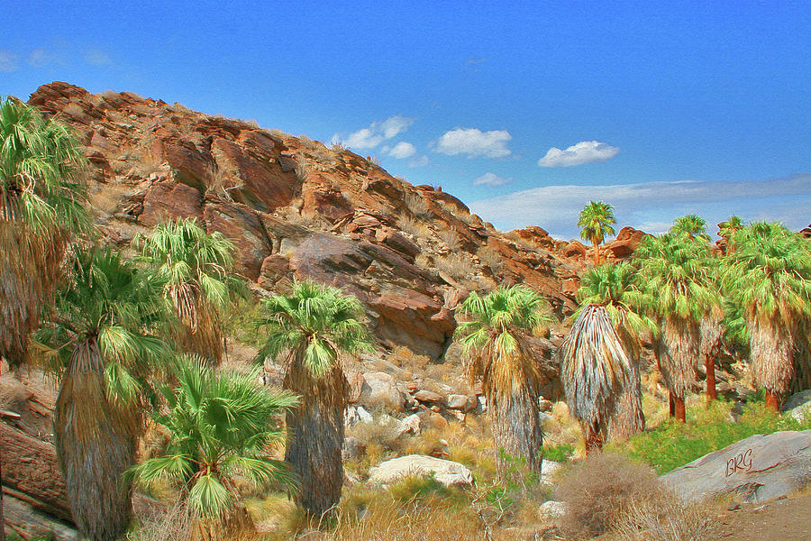 Desert Landscape Photograph - Indian Canyons View In Palm Springs by Ben and Raisa Gertsberg