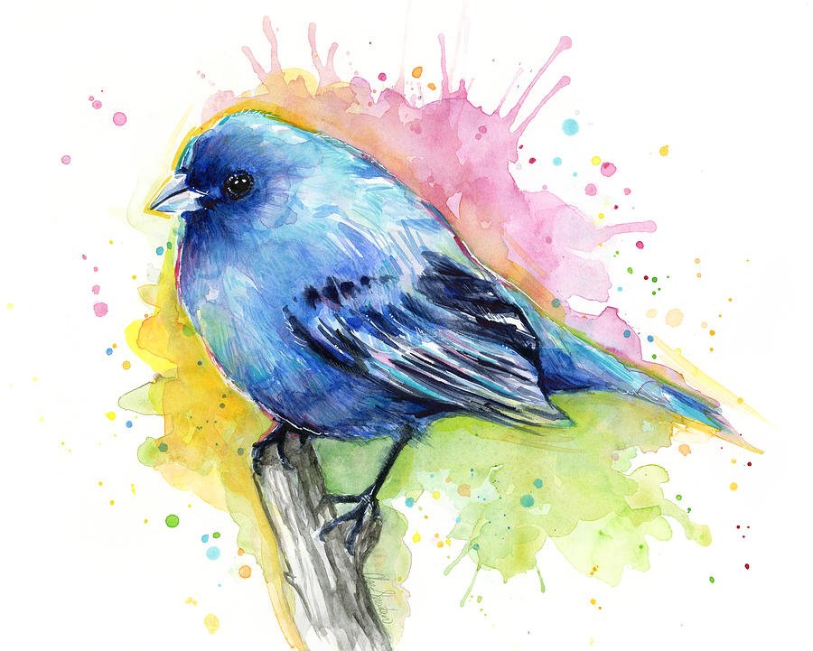 Watercolor Painting Bird Ideas