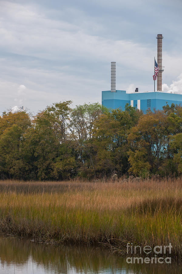 Industry And Wetlands Photograph
