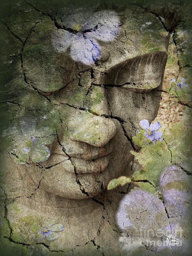 Inner Tranquility Mixed Media