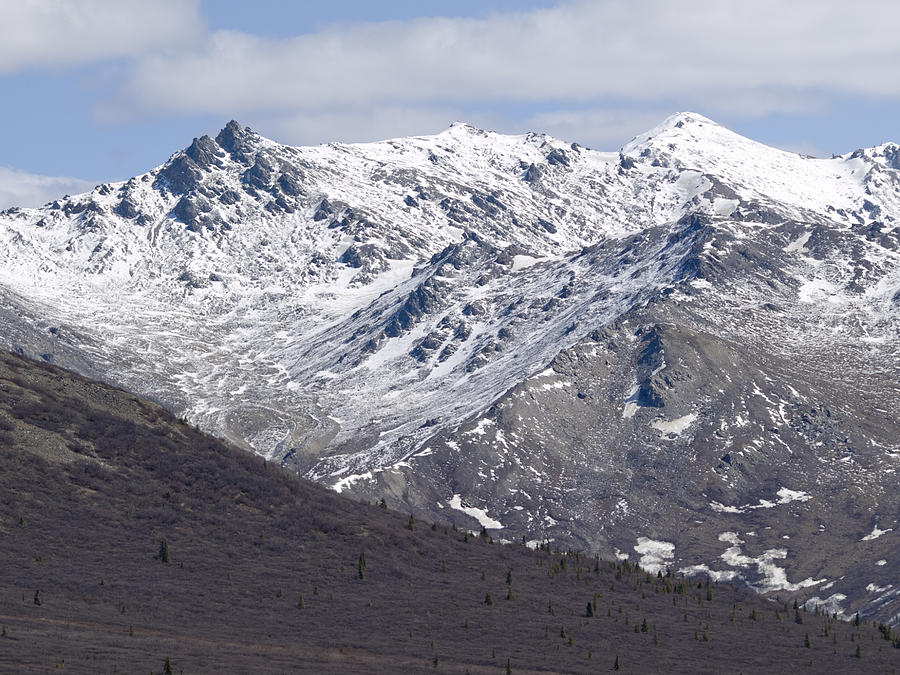 Inside Denali National Park 2 Photograph