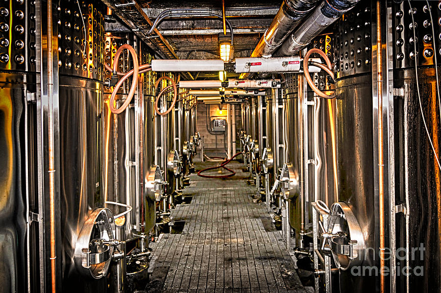 Inside Winery Photograph  - Inside Winery Fine Art Print
