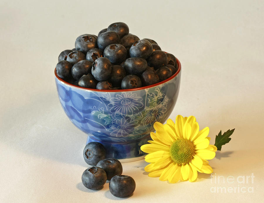 Inspired By Blue Berries Photograph  - Inspired By Blue Berries Fine Art Print