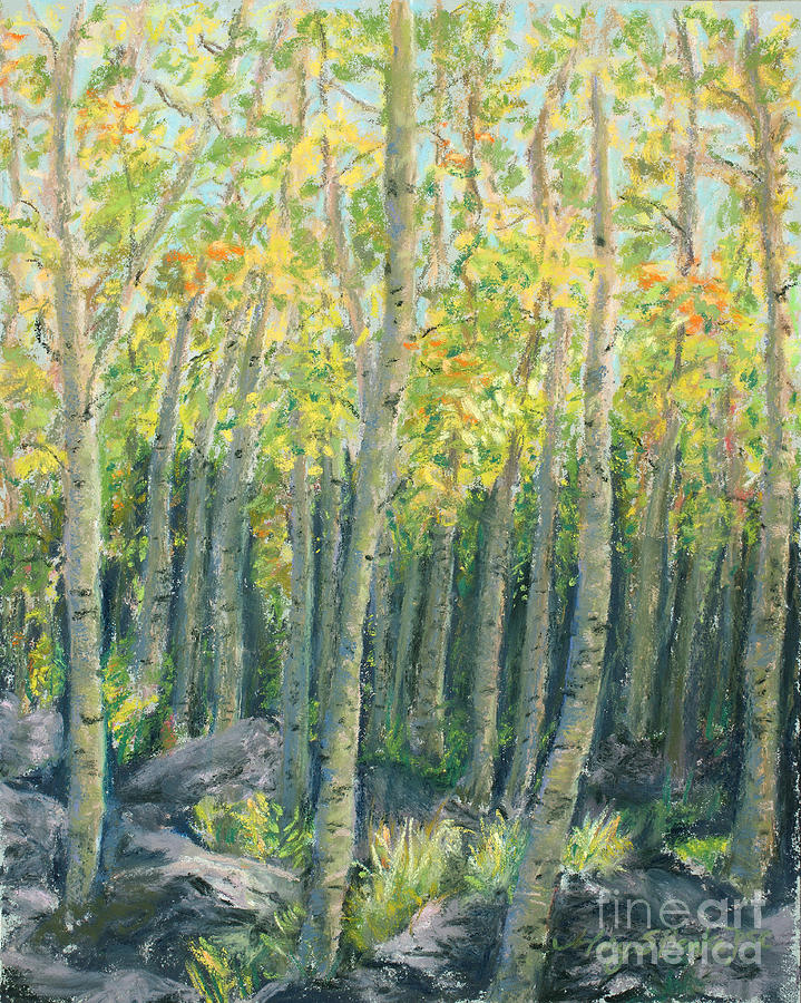 Into The Aspens Painting