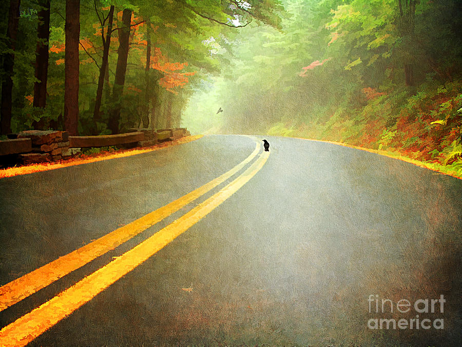 Into The Fog Photograph  - Into The Fog Fine Art Print