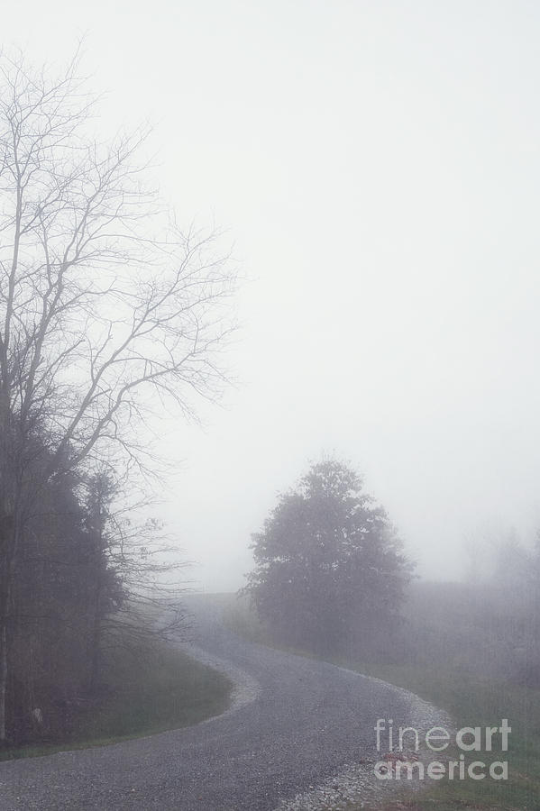 Fog Photograph - Into The Fog by Kay Pickens
