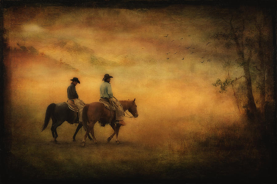 Into The Mist Photograph