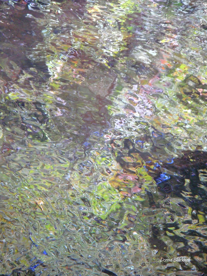 Iridescence Photograph