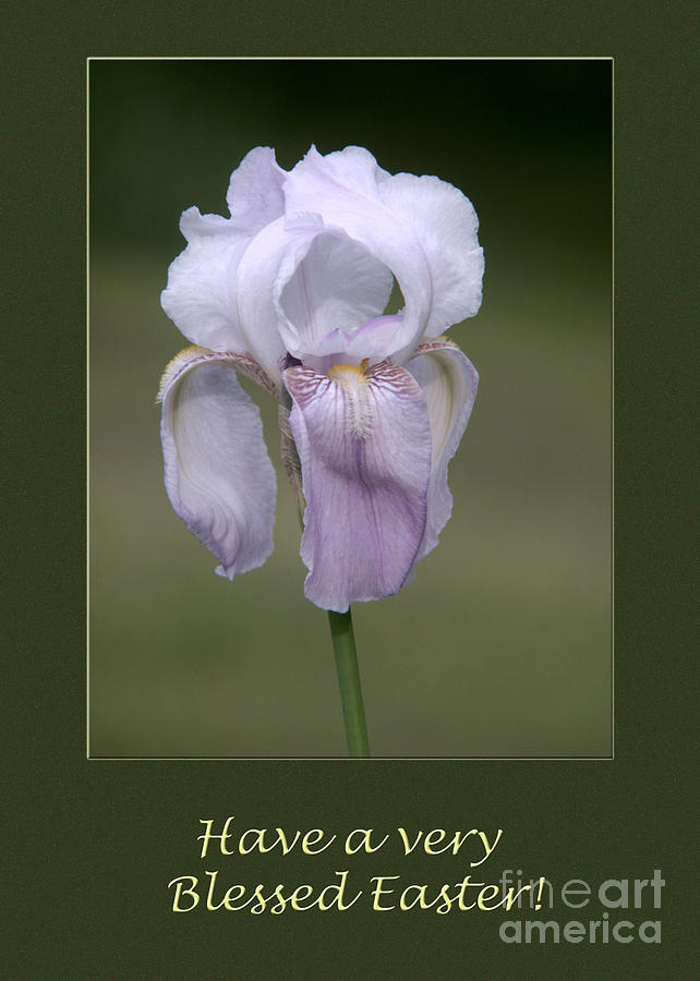 Iris Blessed Easter Greeting Card Photograph
