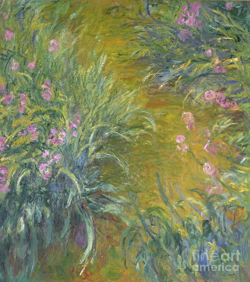 Iris Painting By Claude Monet