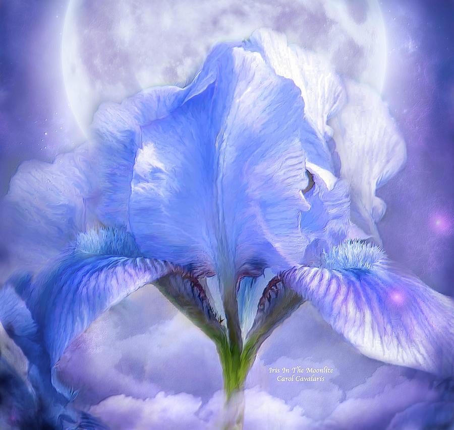 Iris Mixed Media - Iris - Goddess In The Moonlite by Carol Cavalaris