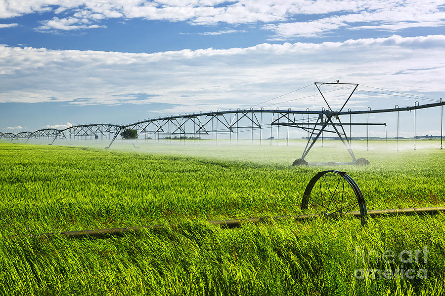Irrigation On Saskatchewan Farm Photograph  - Irrigation On Saskatchewan Farm Fine Art Print