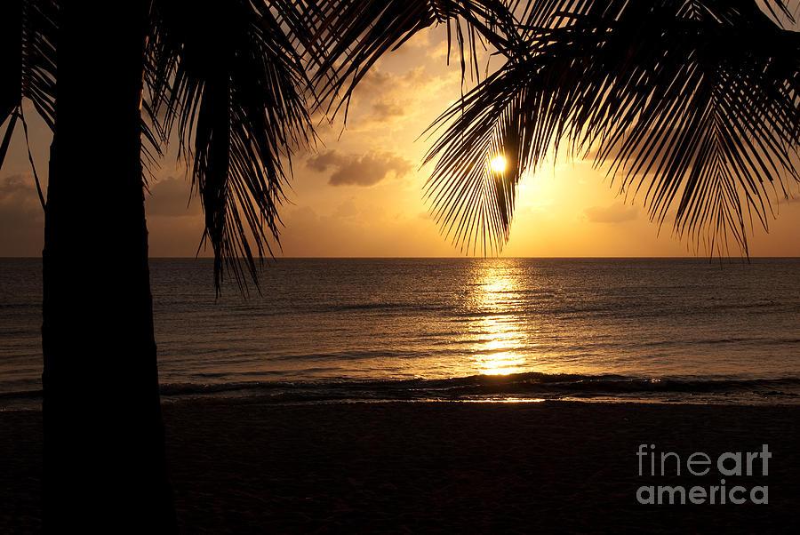 Island Sunset Photograph