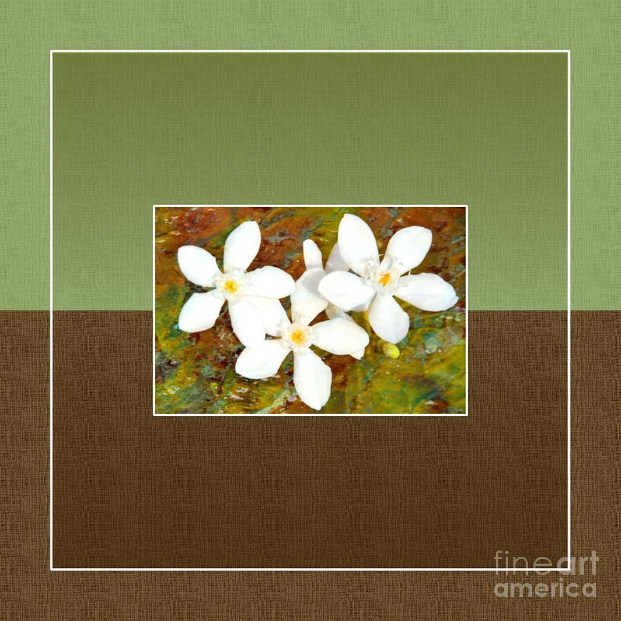 Islander-no1 Digital Art