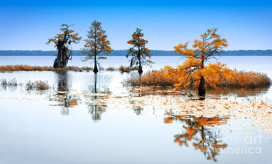 Isle Of Peace - North Carolina Photograph
