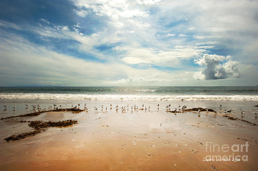 It Was A Sunny Day At The Beach From The Book My Ocean Photograph