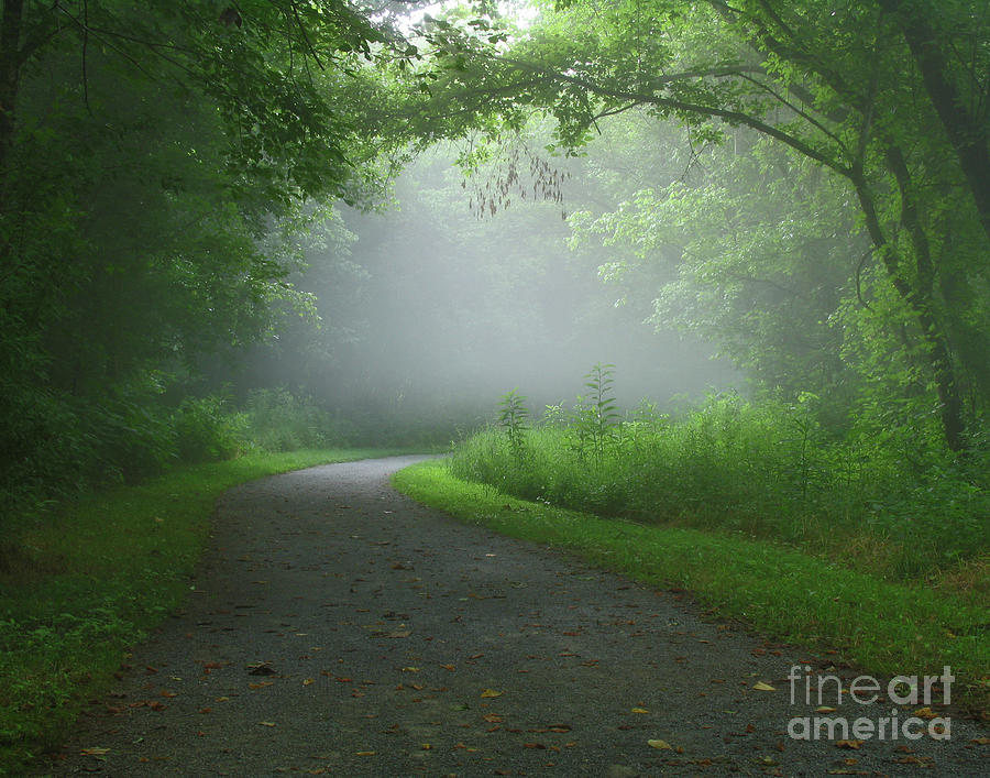 Its Not Sleepy Hollow Photograph  - Its Not Sleepy Hollow Fine Art Print
