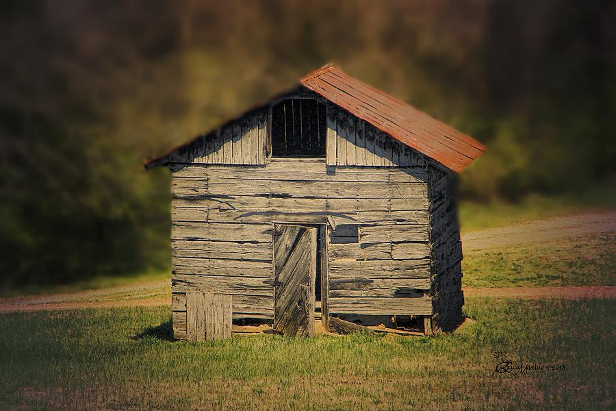 Cabin Photograph - Itsy Bitsy Cabin by EricaMaxine  Price