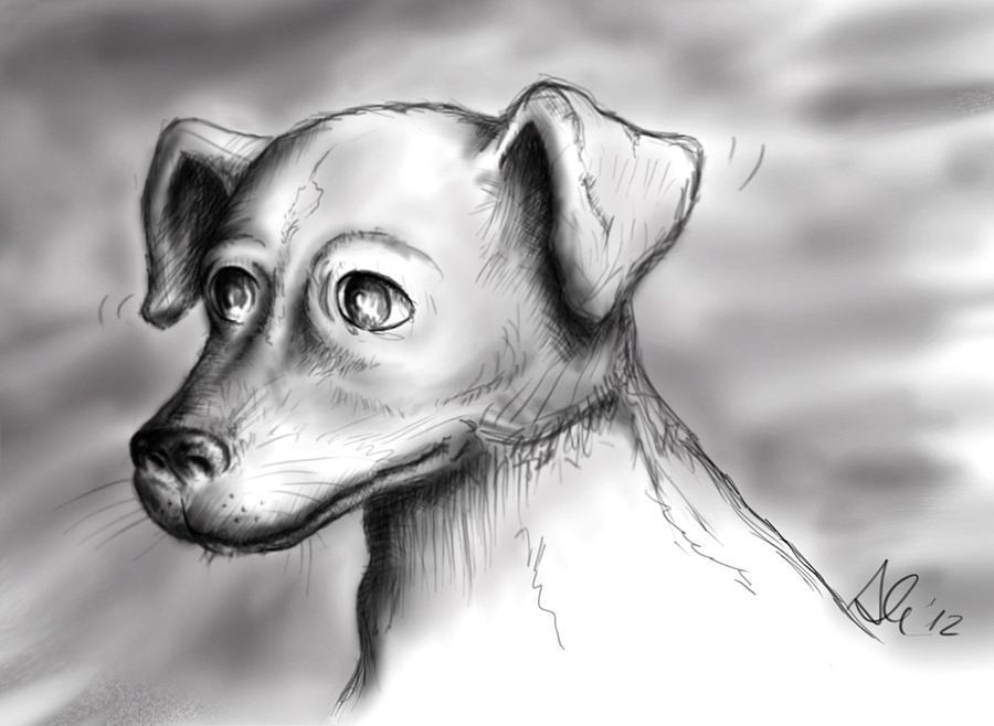 Jack Drawing