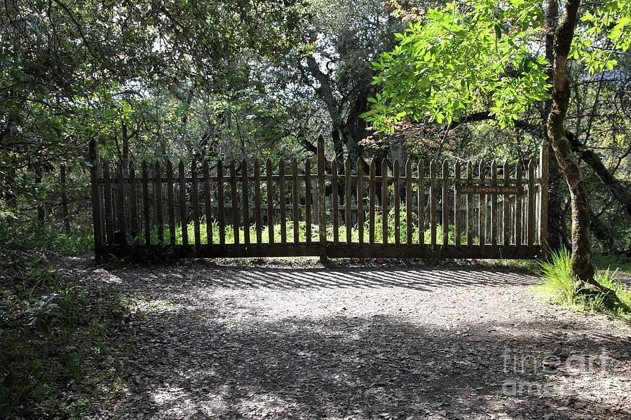Jack London Grave Site 5d21982 Photograph