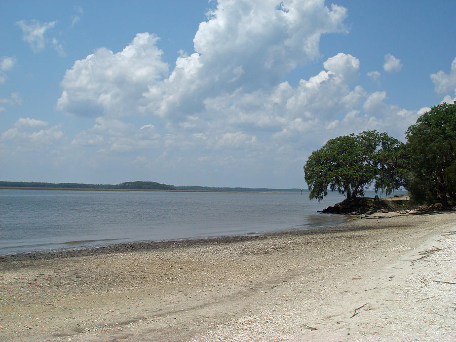 Jacksonville Guana River Park Beach Ponte Vedra Photograph