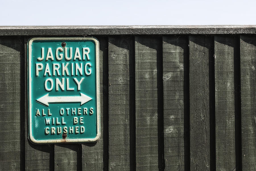 Jaguar Car Park Photograph  - Jaguar Car Park Fine Art Print