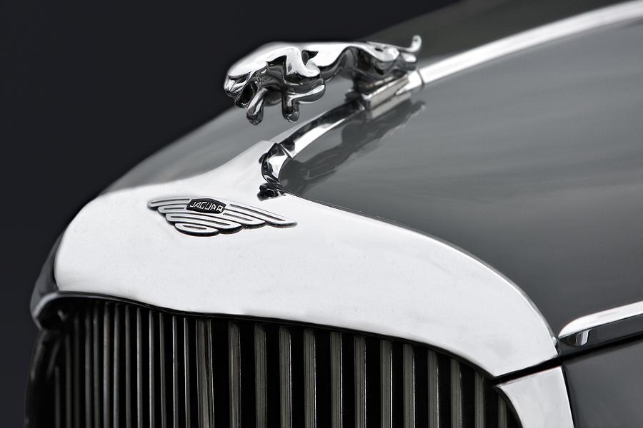 Jaguar Mk Ix Hood Photograph
