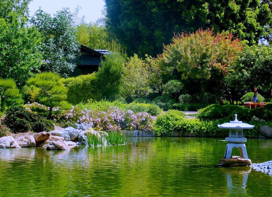 Japanese friendship garden photograph by vicki lomay for Japanese friendship garden