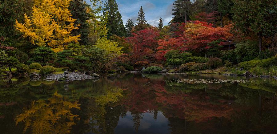 Japanese Garden Reflection Photograph