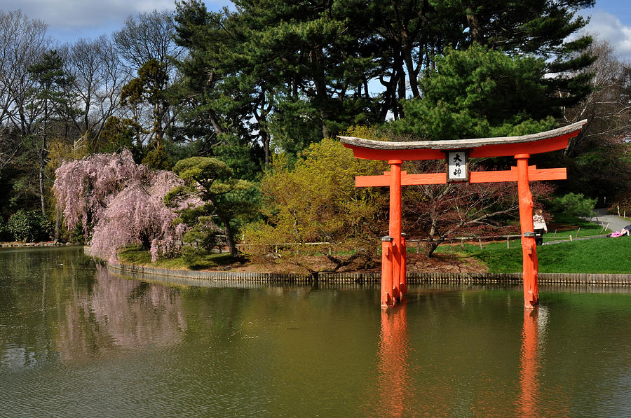 Japanese Garden With Orange Arch Photograph by Diane Lent