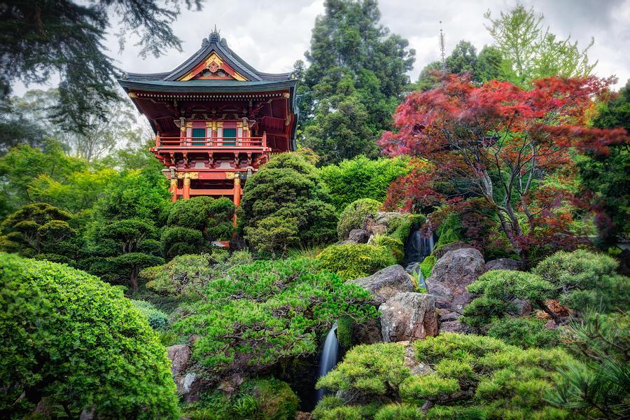 Japanese Tea Garden Golden Gate Park Photograph By Adam Romanowicz