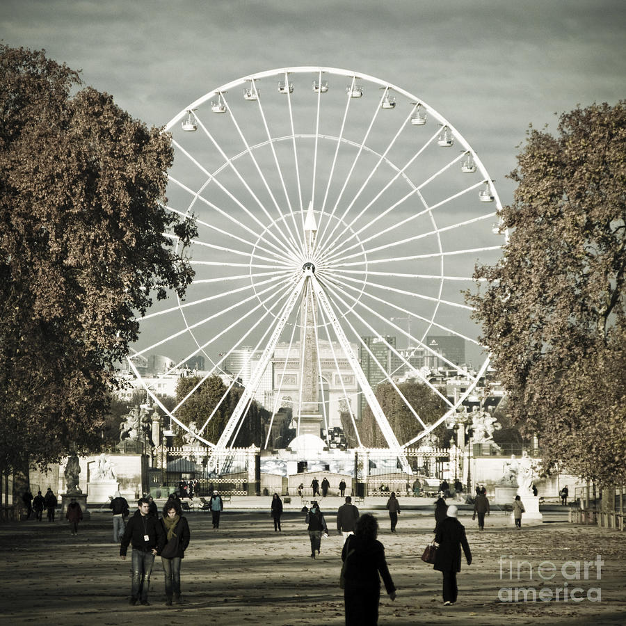 Jardin Des Tuileries Park Paris France Europe  Photograph
