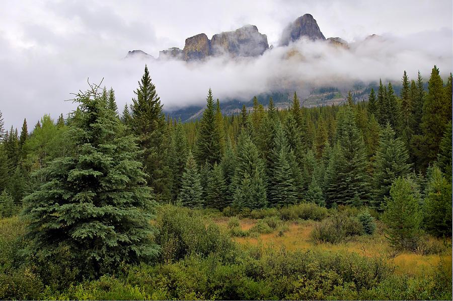 Jasper Peaks Photograph