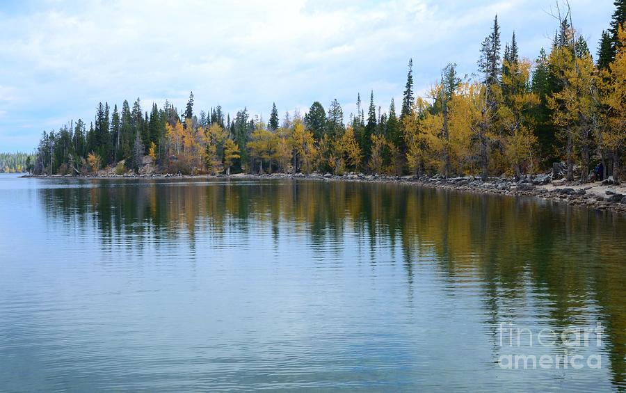 Jenny Lake Photograph