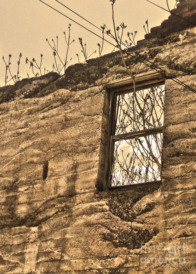 Jerome Arizona - Ruins - 01 Photograph  - Jerome Arizona - Ruins - 01 Fine Art Print