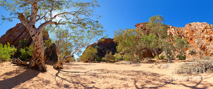 Jessies Gap Outback Water Hole Central Australia Northern Territory Australian Landscape Landscapes Rocky Outcrop Ghost Gums Trees Cliff Face West Macdonnell Ranges Photograph - Jessies Gap by Bill  Robinson