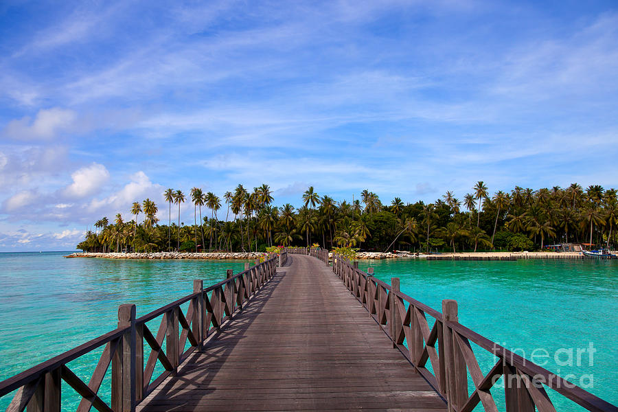 Jetty On Tropical Island Photograph