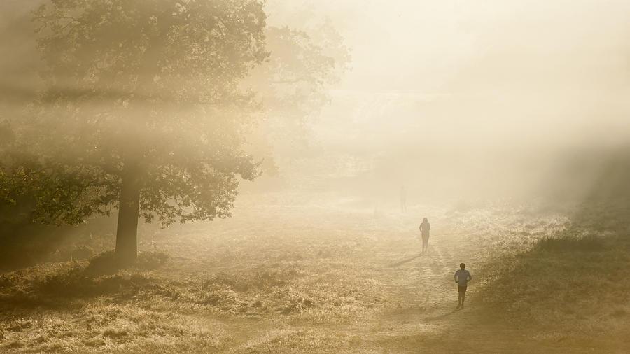 Mist Photograph - Joggers In Richmond Park London On A Crisp Foggy Autumn Morning by Matthew Gibson