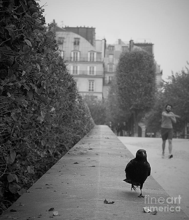 Jogging Photograph