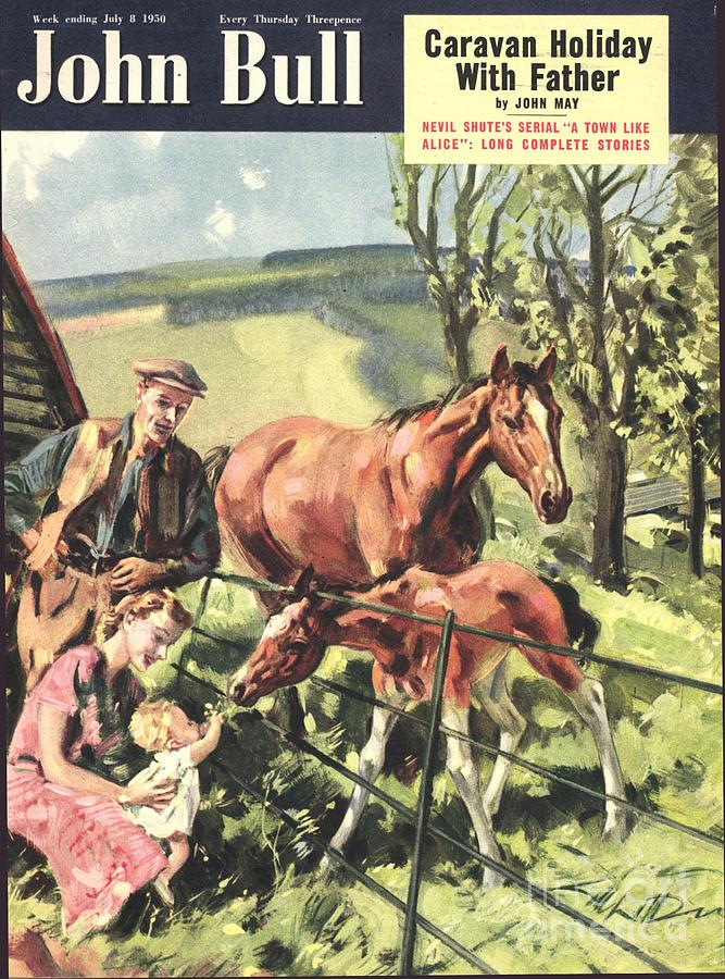 John Bull 1950 1950s Uk Horses Pets Drawing