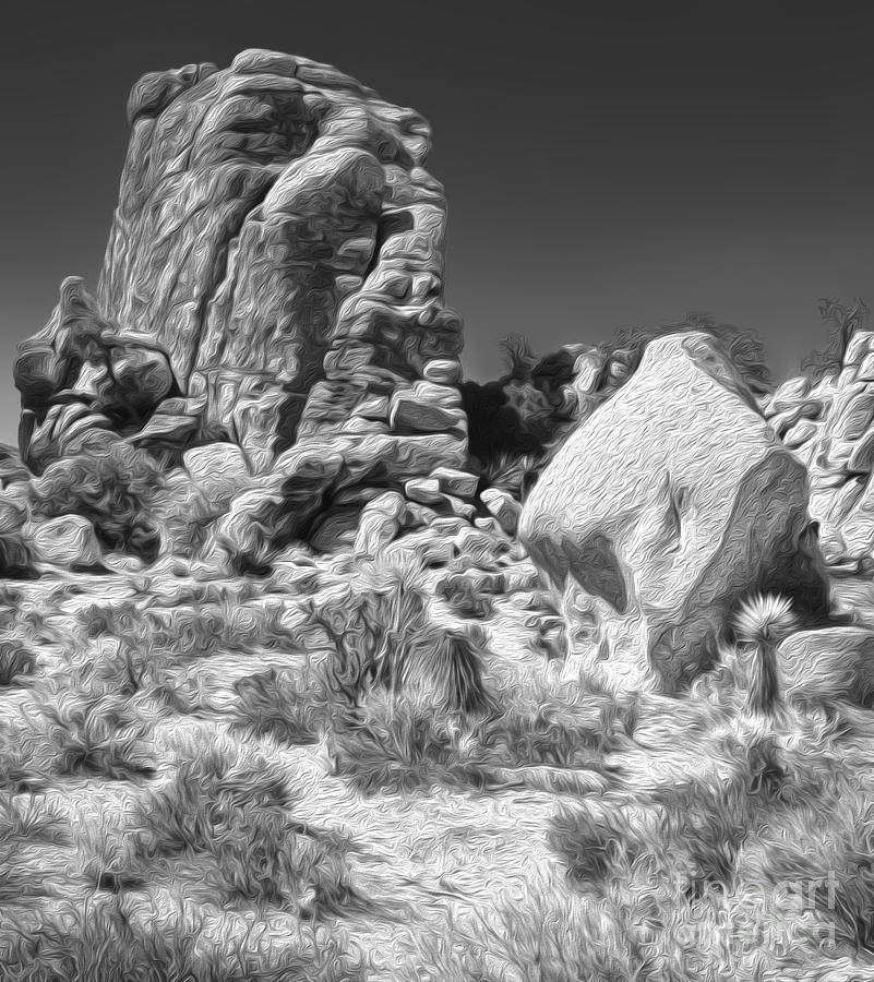 Joshua Tree - 14 Painting  - Joshua Tree - 14 Fine Art Print