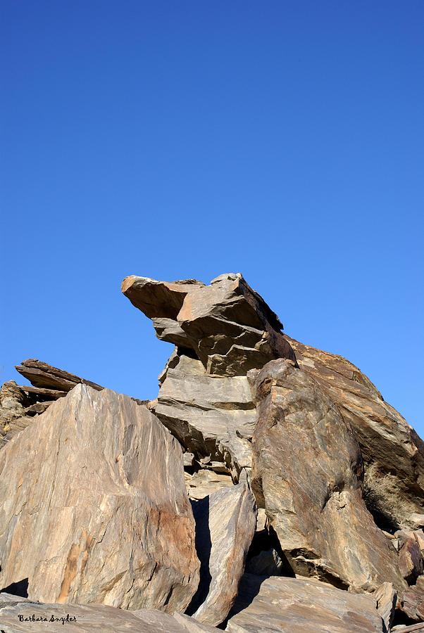 Joshua Tree Monster Rock Digital Art - Joshua Tree Monster Rock by Barbara Snyder