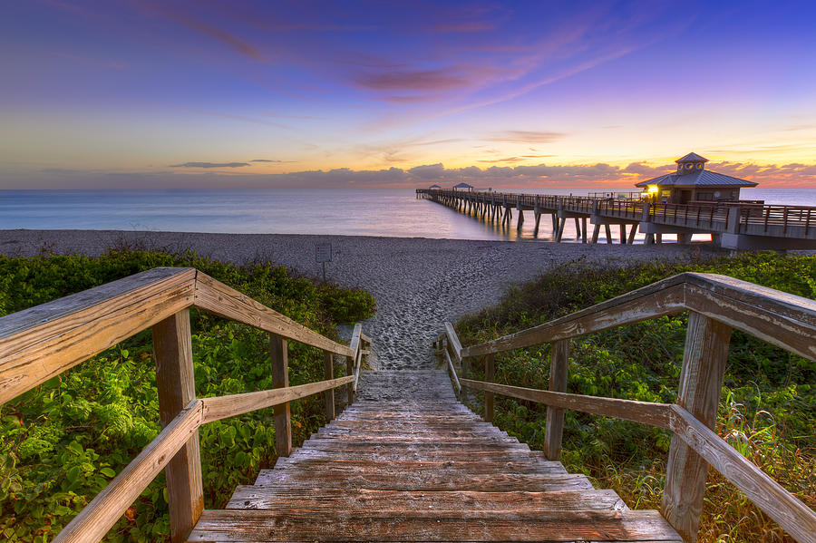 Juno Beach   Photograph