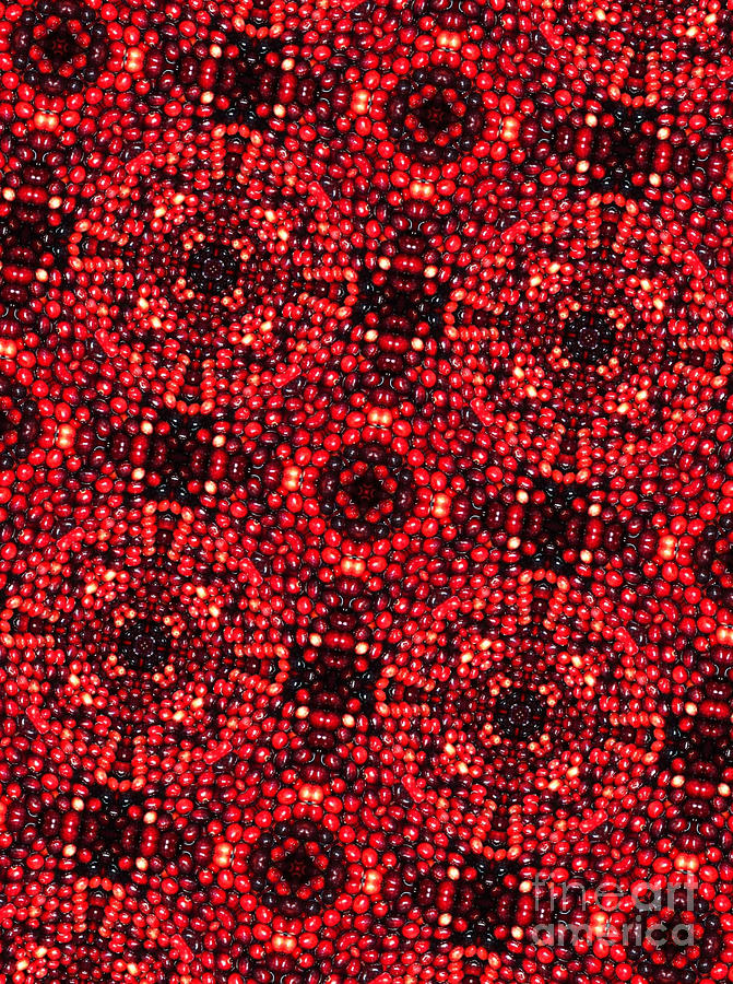 Kaleidoscope Cranberries Digital Art  - Kaleidoscope Cranberries Fine Art Print