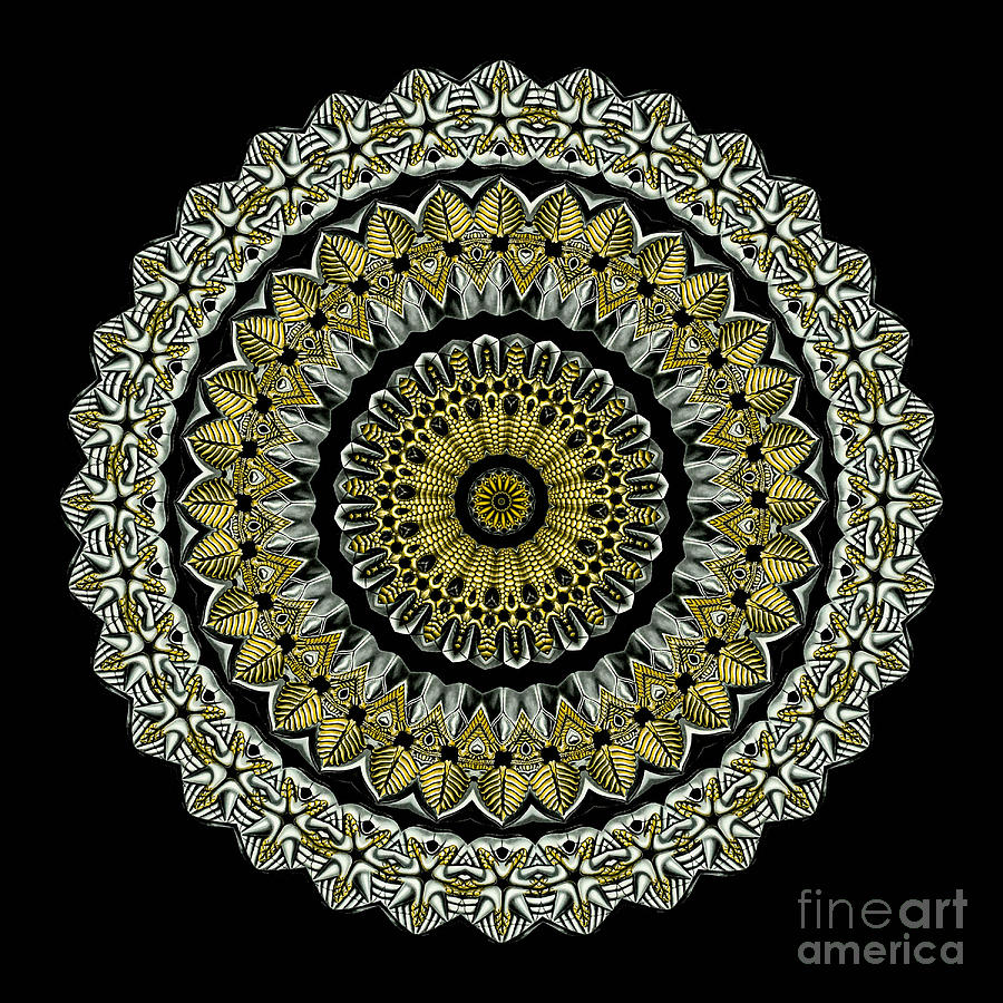 Kaleidoscope Ernst Haeckl Sea Life Series Steampunk Feel Photograph  - Kaleidoscope Ernst Haeckl Sea Life Series Steampunk Feel Fine Art Print