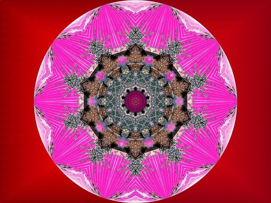 Kaleidoscope Digital Art - Kaleidoscope by Mike Breau