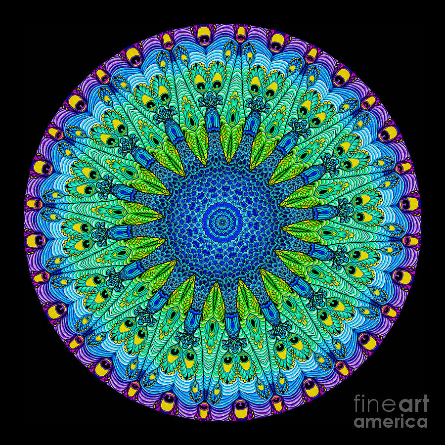 Kaleidoscope Peacock Photograph  - Kaleidoscope Peacock Fine Art Print